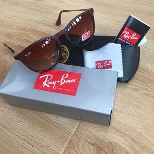 Ray Ban Sunglasses RB4171 brown